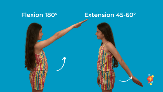 Girl flexing and extending at shoulder showing range of movement