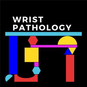 DFTB-Modules_Wrist Pathology